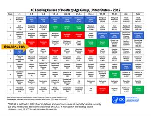 10 Leading Causes of Death by Age Group, U.S. 2017